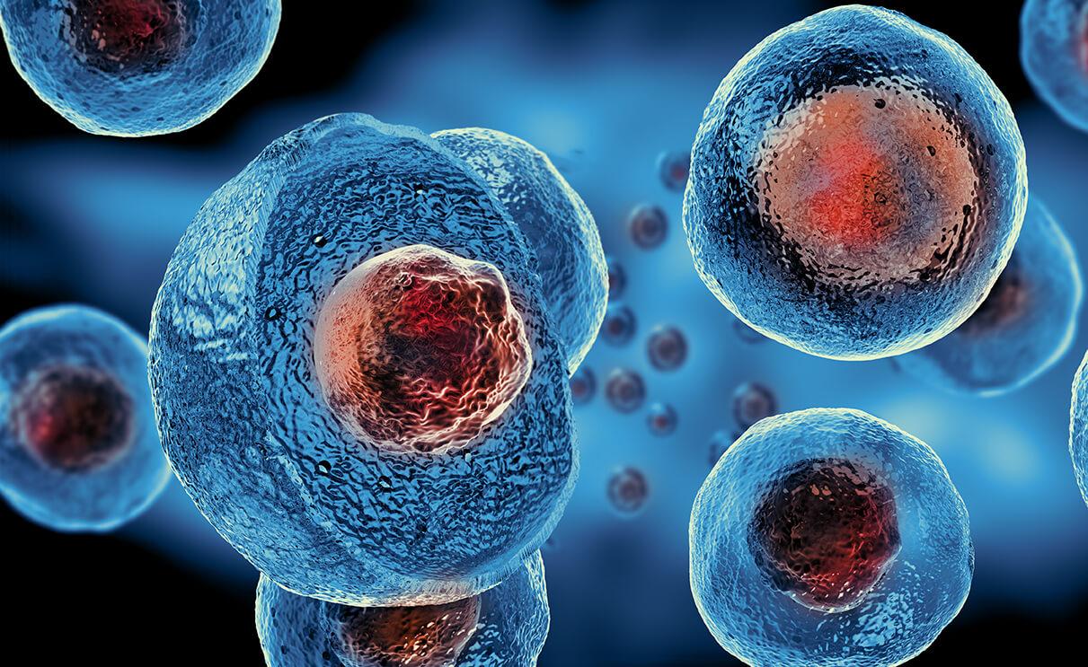Regenerative Therapies